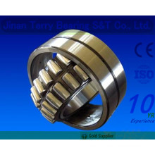 The Good Quality Low Noise Cylindrical Roller Bearings (NN3008)